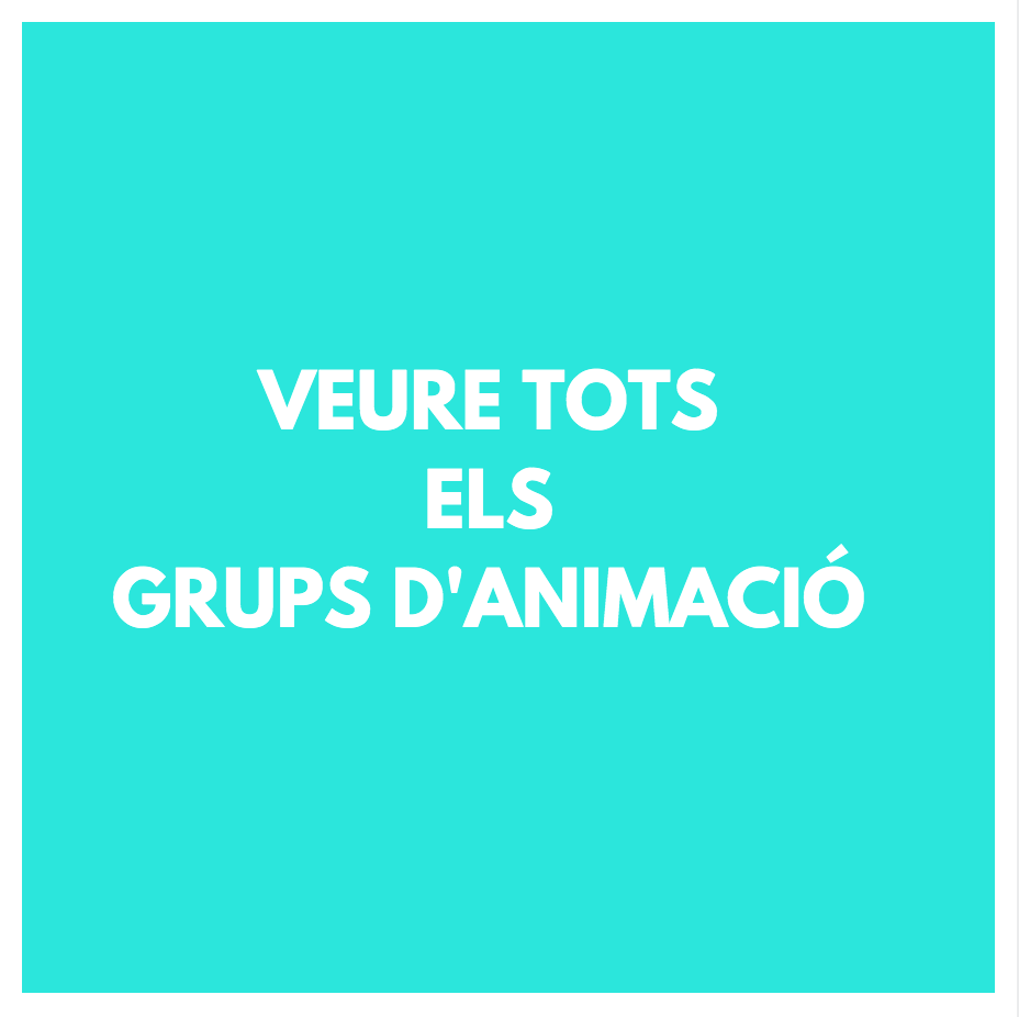 ANIMACIÓ INFNATIL -GRUPS D'ANIMACIÓ - GRUPS D'ANIMACIÓ INFANTIL