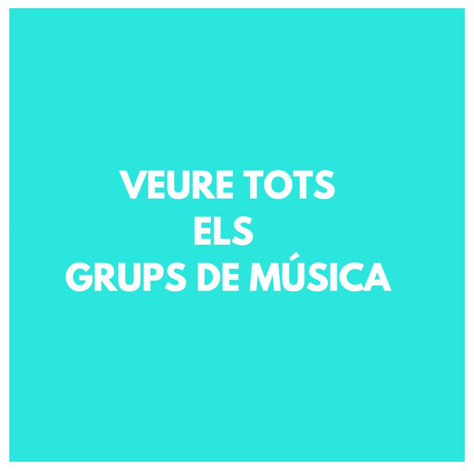 GRUPS DE MÚSICA