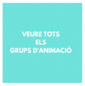 GRUPS ANIMACIO - ANIMACIO INFANTIL
