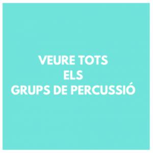 GRUPS DE PERCUSSIO - PERCUSSIO- BATUCADA